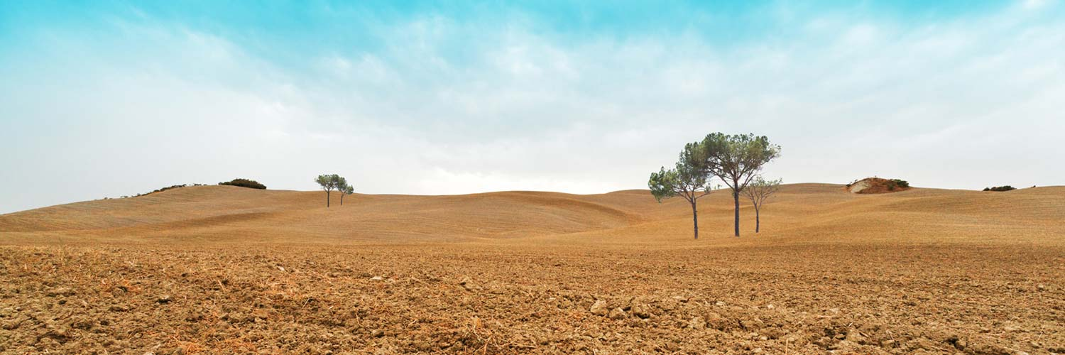 tuscany-plowed-field-1336001